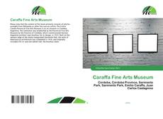 Bookcover of Caraffa Fine Arts Museum