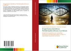 Bookcover of Engenharia Genética: Ponderações éticas e jurídicas