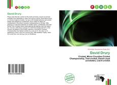 Bookcover of David Drury