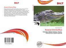 Couverture de Acacia Verniciflua