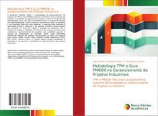 Metodologia TPM e Guia PMBOK no Gerenciamento de Projetos Industriais的封面