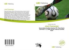 Bookcover of Joel Camargo