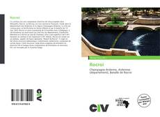 Bookcover of Rocroi