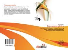 Bookcover of Crossosomatales