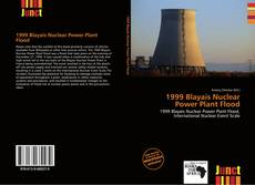 Bookcover of 1999 Blayais Nuclear Power Plant Flood