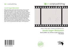 Jacob Sager Weinstein的封面
