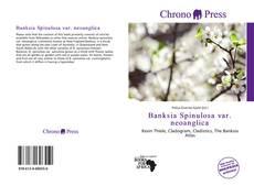 Bookcover of Banksia Spinulosa var. neoanglica