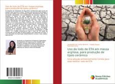 Capa do livro de Uso do lodo de ETA em massa argilosa, para produção de tijolo cerâmico