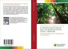 Borítókép a  O Trabalho Extrativista do Açaí: um estudo na ilha do Combú - Belém/PA - hoz