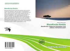Bookcover of Blandfordia Nobilis