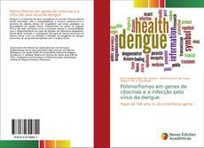 Bookcover of Polimorfismos em genes de citocinas e a infecção pelo vírus da dengue
