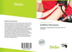 Bookcover of Callitris Verrucosa