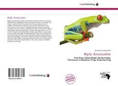 Обложка Hyla Arenicolor