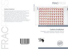 Bookcover of Callitris Endlicheri