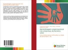 Bookcover of Aprendizagem organizacional nas empresas do terceiro setor