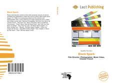 Capa do livro de Black Spark