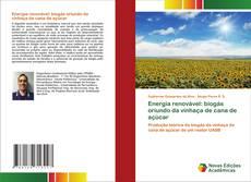 Обложка Energia renovável: biogás oriundo da vinhaça de cana de açúcar