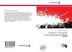 Bookcover of Calytrix Tetragona