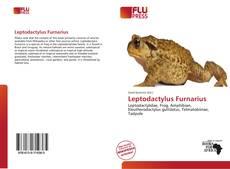 Portada del libro de Leptodactylus Furnarius
