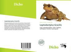 Copertina di Leptodactylus Gracilis