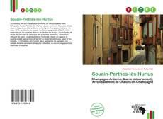 Capa do livro de Souain-Perthes-lès-Hurlus