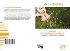 Ceratopetalum Gummiferum的封面