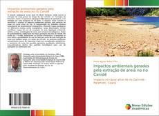 Copertina di Impactos ambientais gerados pela extração de areia no rio Canidé