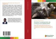Bookcover of Direitos Fundamentais da criança e do adolescente