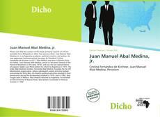 Обложка Juan Manuel Abal Medina, jr.