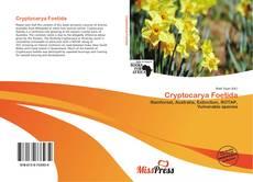 Обложка Cryptocarya Foetida