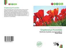 Bookcover of Cryptocarya Foveolata