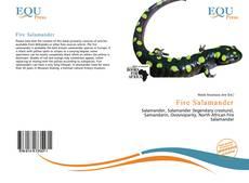 Обложка Fire Salamander