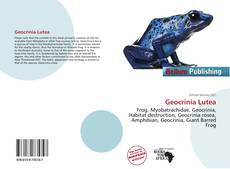 Bookcover of Geocrinia Lutea