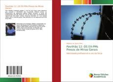 Bookcover of Pavilhão 12: OS EX-PMs Presos de Minas Gerais