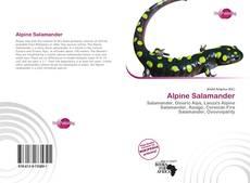 Bookcover of Alpine Salamander
