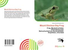 Bookcover of Mount Glorious Day Frog