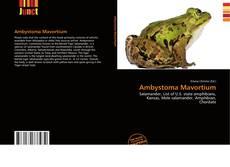 Ambystoma Mavortium kitap kapağı