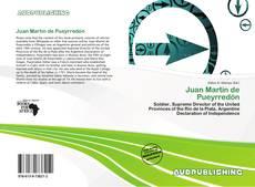 Bookcover of Juan Martín de Pueyrredón