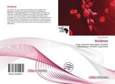 Bookcover of Acidose