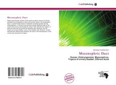 Bookcover of Mesonephric Duct