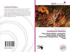 Copertina di Leptopelis Notatus
