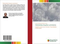 Capa do livro de Hidróxidos Duplos Lamelares