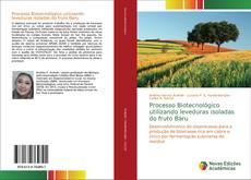 Bookcover of Processo Biotecnológico utilizando leveduras isoladas do fruto Baru