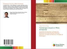 Bookcover of Fandango Caiçara e Meio Ambiente