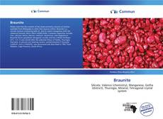 Buchcover von Braunite