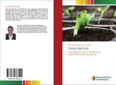 Обложка Gesso Agrícola