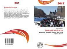Обложка Endiandra Introrsa
