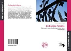 Bookcover of Endiandra Pubens