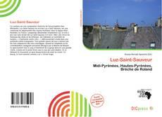 Luz-Saint-Sauveur kitap kapağı