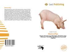 Bookcover of Bazna (Pig)